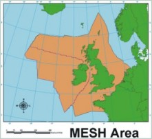 MESH research area